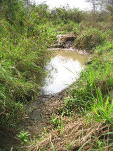 The main water source for Ayakope before the well repairs